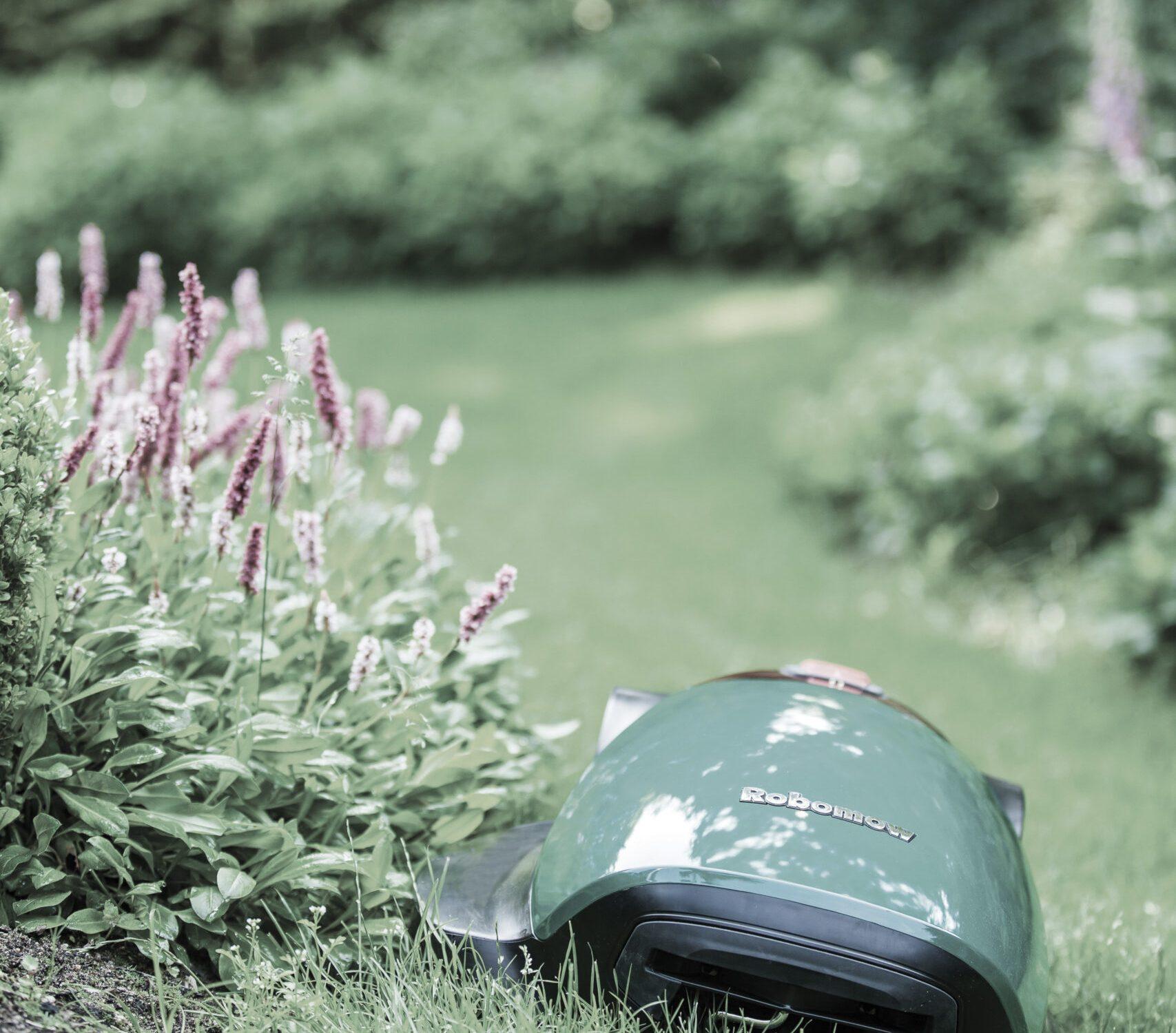 robomowrccuttingthegrass